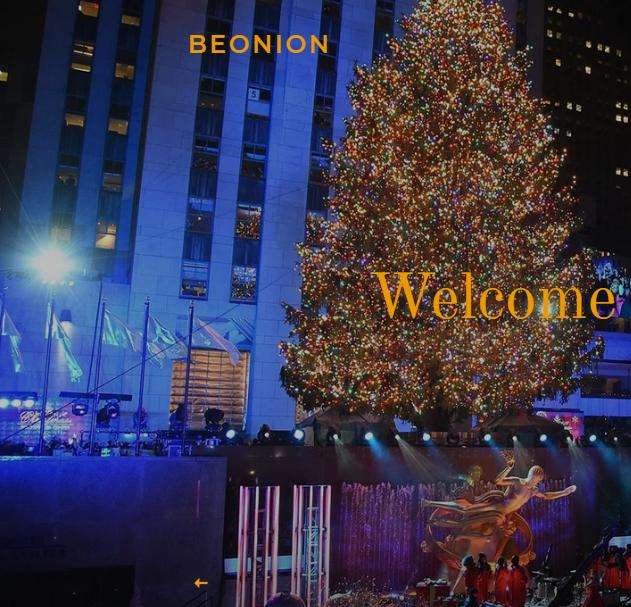 Beonion Online Store